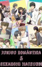 Junjou Romántica & Sekaiichi Hatsukoi by Hikari1909