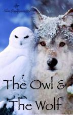 The Owl And The Wolf by FallenAngel2o2