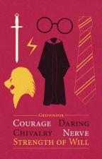 Harry Potter Book by Maraudeer