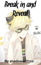 Break In and Reveal (Miraculous Ladybug One-Shot) by ShadowedTime