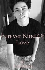 Forever Kind of Love by LittleClash