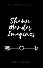 Shawn Mendes Imagines  by scarymendes
