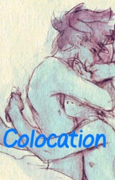 Colocation | Newtmas
