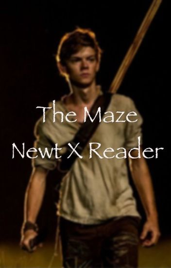 The Maze (Newt X Reader) Book 1 - complete