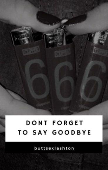 Don't Forget to Say Goodbye // Lashton