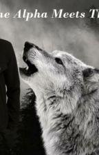The Alpha meets the Rogue by _a_l_l_y_