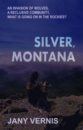 Silver, Montana by JVernis