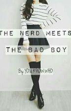 The Nerd meets The Badboy by Gamer_Girl14