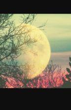 """""""La Luna"""" by Nylive-17"""
