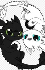 Full of hate, Till I met you ((Toothless x Dragon!Reader)) by IrenaDarkAlphaWolf