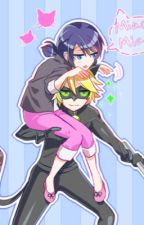 A Switch of the Mind (A Miraculous Ladybug Fanfiction) by secretghostys