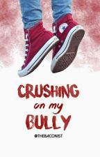 Crushing on my Bully? (A Zerkaa Fanfiction) COMPLETED by TheBaconist