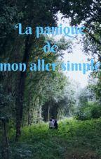 La panique de mon aller simple by lenkaro24