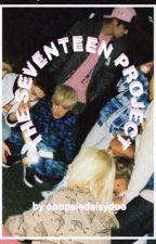 The Seventeen Project by OoopsieDaisydoo