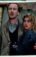 Ronks(Remus and Tonks) by KatiePollard2