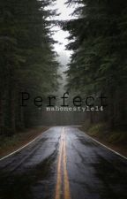Perfect  by mahonestyle14
