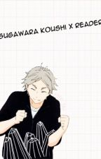 sugawara koushi x reader! by anko_tan