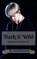 Dark & Wild | Park Jimin *HIATUS* by JiminieChanyTae