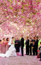 Wedding by Luna_Charming