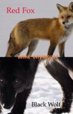 Red Fox Black Wolf by anne-onymouse
