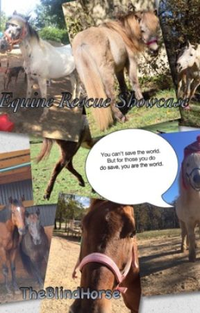 | Equine Rescue Showcase | by rue2you