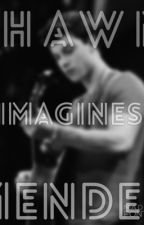 Shawn Mendes Imagines by _thaBae