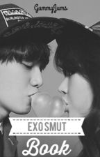 Exo Smut Book by gummyjums