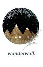 wonderwall :: s.m  by humanoids