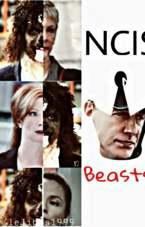 NCIS Beasts by leJibbs1999