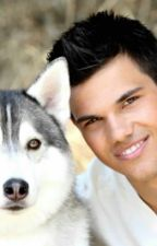 Jacob Black x Reader One Shots by Angelleta15