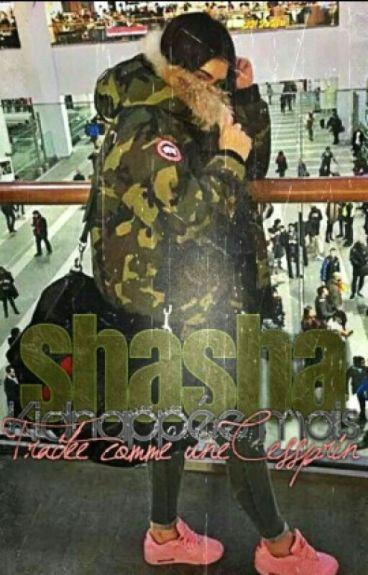 << Chronique de Shahrazede : Kidnappée mais traitée comme une cesseprin >>