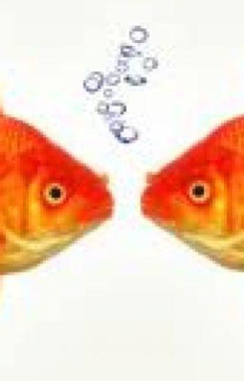 Ang Dalawang Goldfish