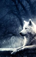 The Broken White Wolf by HopeCamille1