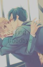 Saying Goodbye (Nagisa x Rei) by xtrashyx