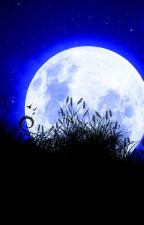 Toute personne a sa moitié sous la lune by CybeliaChris