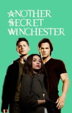 Another Secret Winchester by bonniebird