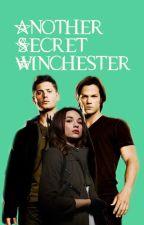 Another Secret Winchester by bonniebird