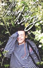 flowers for harry ✿ larry by bttmcurly