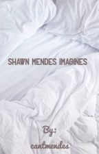 Shawn mendes imagines by cantmendes