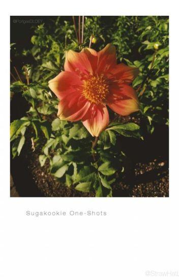 SugaKookie One-Shots