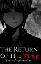 The Return of the King *Dark Link x Reader* by amicitia-ass-cracker