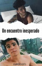 Un Encuentro Inesperado/ Sebastian Villalobos by cristalventuraa