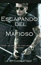 Escapando del Mafioso [Sin Editar] by CamilaFeer