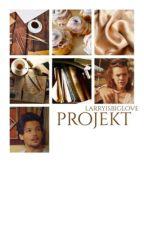 Projekt- Larry Stylinson Fanfiction by Larryisbiglove