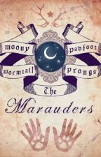 Maraudeurs by Philosyne