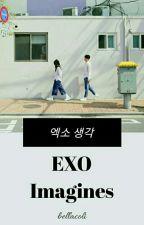 EXO Imagines by BaekAeriYeol