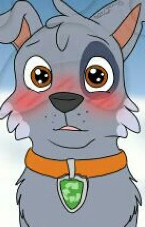 Paw Patrol Rocky X Chase He Took My Heart Chapter