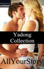 Yadong Collection (YC) by AllYourStory