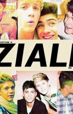 Feelings That Never Went Away ((Zayn and Niall [Ziall] FanFic)) by skinnyziall