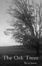 The Oak Trees by cubone